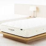 ついに購入!一年かけて選んだベッドはこれだ!!!後悔しない新婚ベッドの選び方 その4